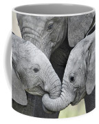 African Elephant Calves Loxodonta Coffee Mug
