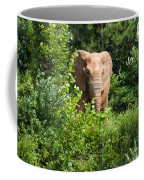 African Elephant Eating In The Shrubs Coffee Mug
