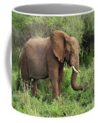 African Elephant Grazing Serengeti Coffee Mug
