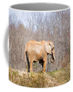 African Elephant On A Hill Coffee Mug