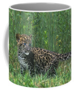 African Leopard Cub In Tall Grass Endangered Species Coffee Mug
