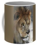African Lion #8 Coffee Mug