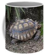African Spurred Tortoise Coffee Mug
