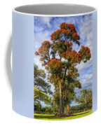 African Tulip At Liliuokalani Park Coffee Mug