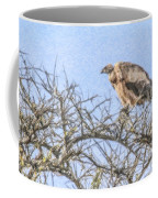 African White-backed Vulture Coffee Mug