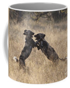 African Wild Dogs Playing Lycaon Pictus Coffee Mug