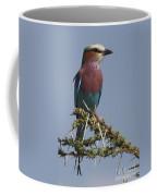 Africa's Rainbow Coffee Mug