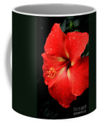 Georgia Red Hibiscus After A Rain Greensboro Georgia Art Coffee Mug