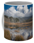 Afternoon Reflections Coffee Mug