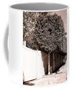 Afternoon Sun Bw Palm Springs Coffee Mug