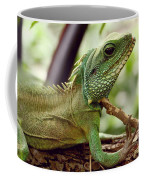 Agamidae Coffee Mug