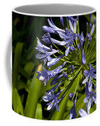 Agapanthus Flower And Bee Coffee Mug