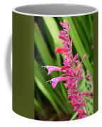 Agastache Desert Sunrise Coffee Mug