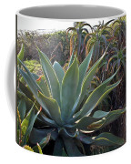 Agave At Sunset Coffee Mug