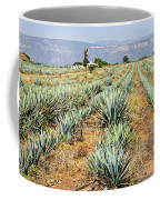 Agave Cactus Field In Mexico Coffee Mug