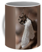 Agreeable Tiger Moth Coffee Mug