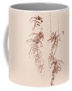 Air Plants In Sepia Coffee Mug