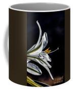 Ajo Lily Close Up Coffee Mug by Robert Bales