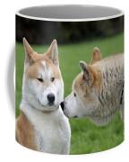 Akita Inu Dogs, Old And Young Coffee Mug