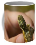 Alabama Red-bellied Turtle -  Pseudemys Alabamensis Coffee Mug