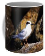 Alabama Tern Coffee Mug