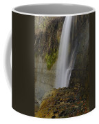 Alabama Waterfall Coffee Mug