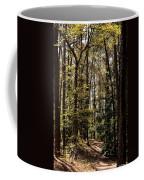 Alabama Woodlands In Spring 2013 Coffee Mug