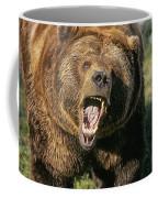 Alaskan Grizzly Coffee Mug
