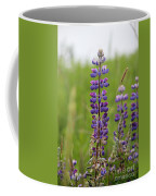 Alaskan Lupines Coffee Mug