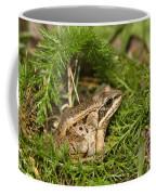 Alaskan  Coffee Mug