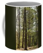 Aldridge Lake Trail Coffee Mug