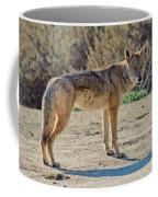 Alert Coyote Coffee Mug