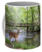 Alert Deer By Bridge In Cades Cove Coffee Mug