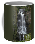 Alexander Falls - Whistler British Columbia Coffee Mug