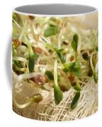 Alfalfa Sprouts Coffee Mug