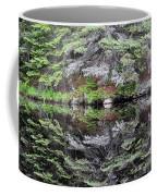 Algonquin Mirror Coffee Mug