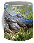 Alligator Smiling Coffee Mug