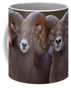 All Eyes Coffee Mug