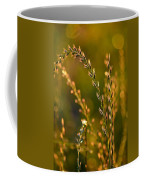 All That Glitters Is Gold Coffee Mug