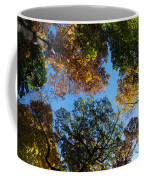 All The Trees Of The Forest Coffee Mug