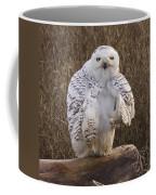 All Turned Around  Coffee Mug