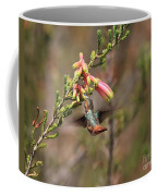 Allen Hummingbird In Flight Coffee Mug
