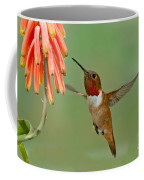 Allens Hummingbird At Flowers Coffee Mug