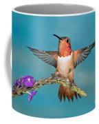 Allens Hummingbird Male Coffee Mug