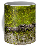Alligator Amoungst Us Coffee Mug