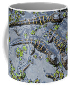 Alligator Babies IIi Coffee Mug