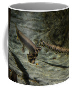 Alligator Gars Coffee Mug