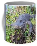 Alligator Overbite Coffee Mug