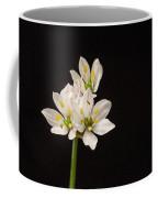 Allium Species 1 Coffee Mug