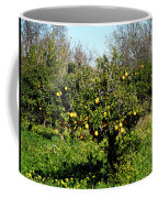 Almanzora Mountain Lemons Winther Spain Coffee Mug